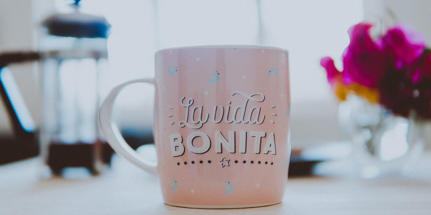 La Vida Bonita means A Beautiful Life in English