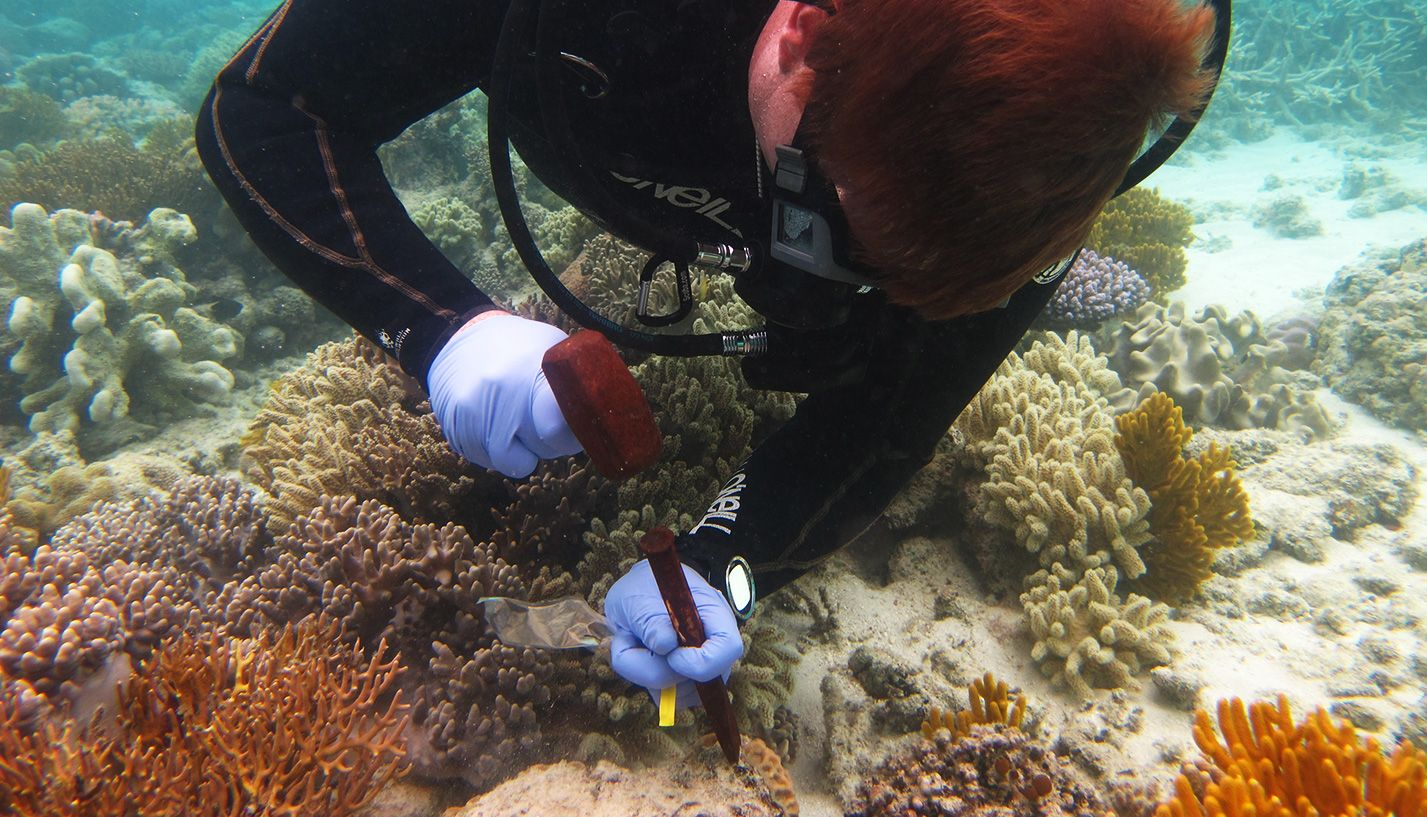Collecting a sample while scuba diving