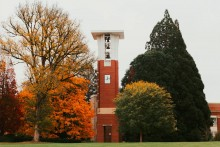 orange leaves surrounding clock tower